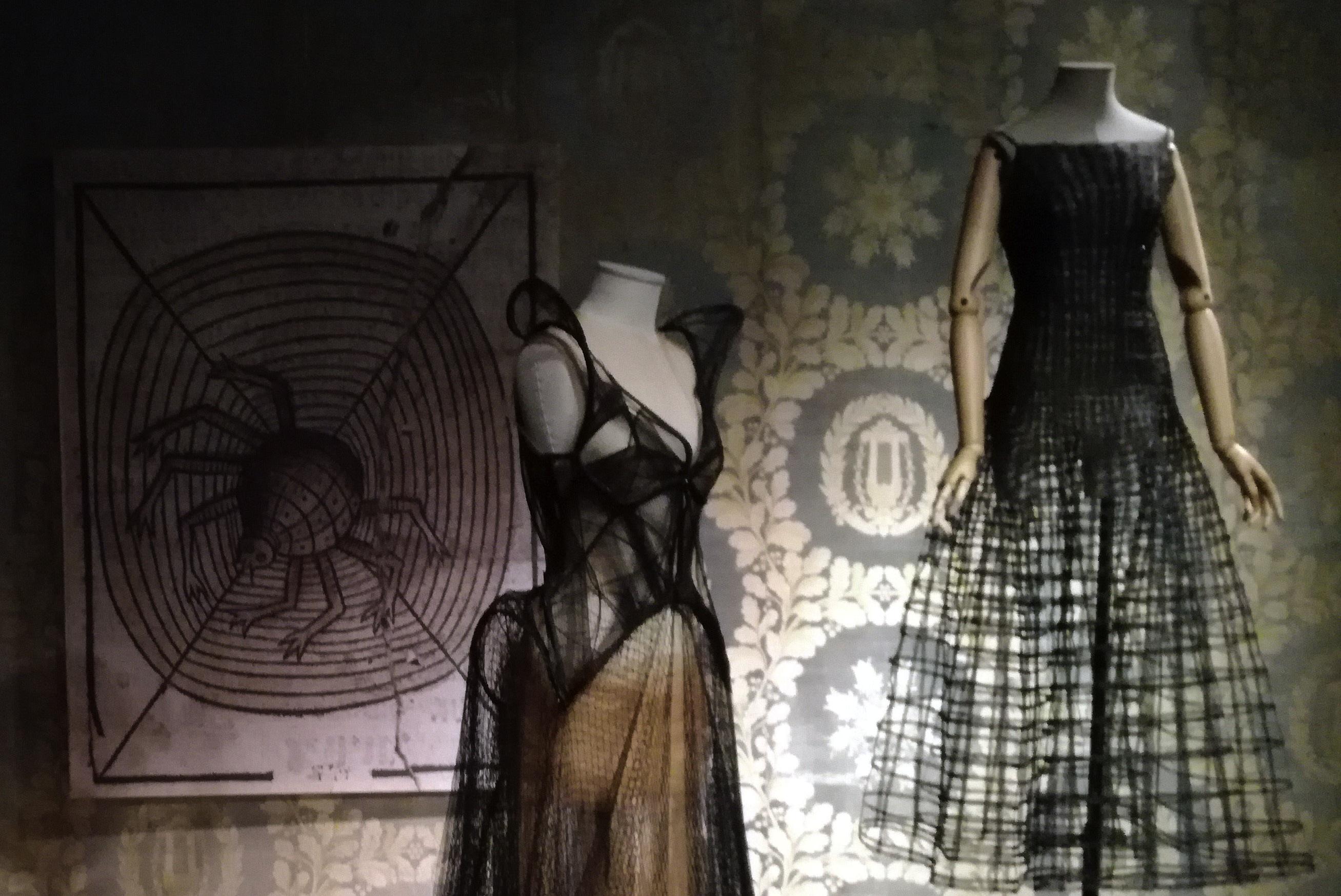 """Sabato 2 marzo 2019 -Visita guidata alla mostra """"Animalia Fashion"""""""